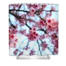 Shower Curtain featuring the photograph flowering of the almond tree, Jerusalem by Yoel Koskas