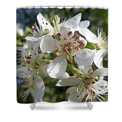 Flowering Of White Flowers 2 Shower Curtain