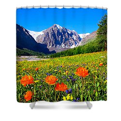 Flowering Valley. Mountain Karatash Shower Curtain