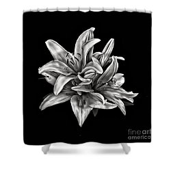 Flowers 8449 Shower Curtain