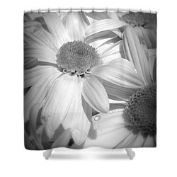 Shower Curtain featuring the photograph Flowers by Amanda Eberly-Kudamik