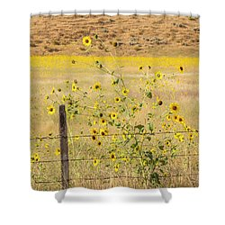 Flowers And Fence Shower Curtain