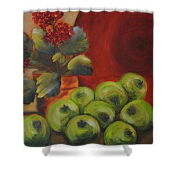 Flowers And Fruit Shower Curtain
