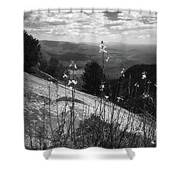 Flowers At The Top Of Table Rock Trail Shower Curtain by Kelly Hazel