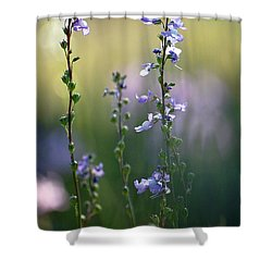 Flowers By The Pond Shower Curtain by Robert Meanor