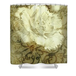 Flowers By The Window Shower Curtain by Jorgo Photography - Wall Art Gallery