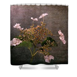 Shower Curtain featuring the photograph Flowers For The Mind by Randi Grace Nilsberg