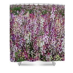 Flowers Forever Shower Curtain by Carol Groenen