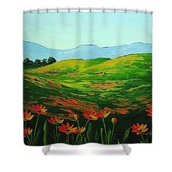 Flowers In A Meadow Shower Curtain by Nolan Clark