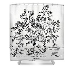 Flowers In A Vase Ink Art Shower Curtain