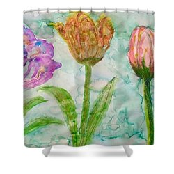 Tulips A'bloom Shower Curtain