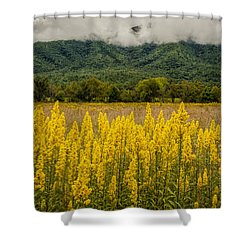 Flowers In Cades Cove Shower Curtain