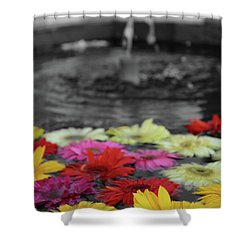 Flowers In Fountain Shower Curtain