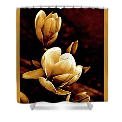 Flowers In Sepia  Shower Curtain