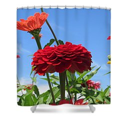 Flowers In The Blue Shower Curtain by Jeanette Oberholtzer
