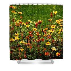 Flowers In The Fields Shower Curtain by Joseph Frank Baraba
