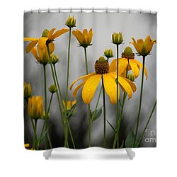 Flowers In The Rain Shower Curtain by Robert Meanor