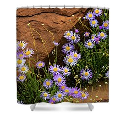 Flowers In The Rocks Shower Curtain by Darren White