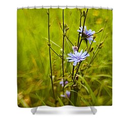 #flowers #lensbaby #composerpro Shower Curtain by Mandy Tabatt