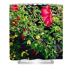 Flowers Of Bethany Beach - Hibiscus And Black-eyed Susams Shower Curtain