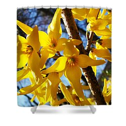 Flowers Of The Sky Shower Curtain