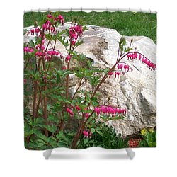 Shower Curtain featuring the digital art Flowers On The Rocks by Barbara S Nickerson