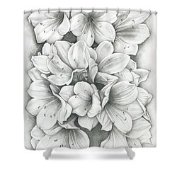Clivia Flowers Pencil Shower Curtain
