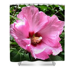 #flowers #pink #floral Shower Curtain by Jennifer Beaudet