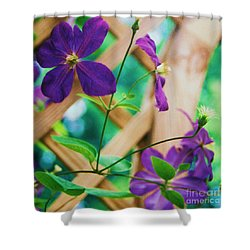 Shower Curtain featuring the painting Flowers Purple by Eric  Schiabor