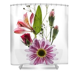 Flowers Transparent 1 Shower Curtain