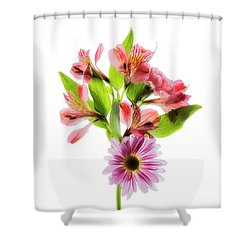 Shower Curtain featuring the photograph Flowers Transparent  2 by Tom Mc Nemar