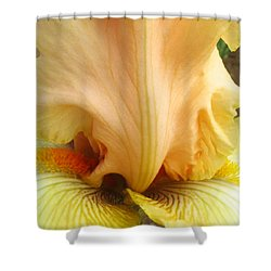 Flowerscape Yellow Iris One Shower Curtain