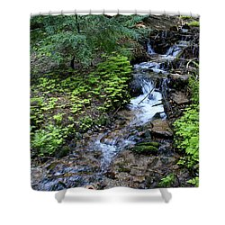 Shower Curtain featuring the photograph Flowing Creek by Ben Upham III