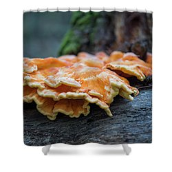 Flowing Fungus Shower Curtain