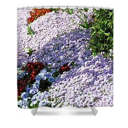 Flowing Phlox Shower Curtain by Jan Amiss Photography