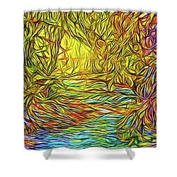 Flowing River Vision Shower Curtain