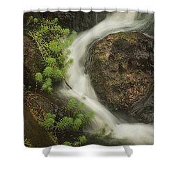 Shower Curtain featuring the photograph Flowing Stream by David Coblitz
