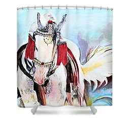 Flowing Tail Shower Curtain
