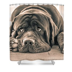 Floyd Shower Curtain by Racheal Christian