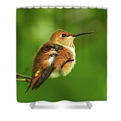 Fluff Ball Shower Curtain