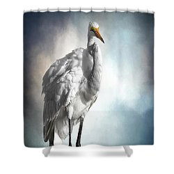 Fluffed And Plumped Shower Curtain