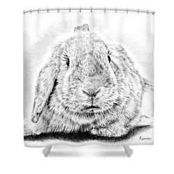 Fluffy Bunny Shower Curtain