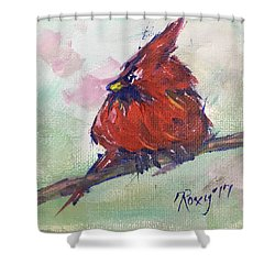 Fluffy Cardinal Chick Shower Curtain