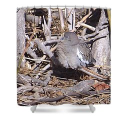Fluffy Dove Shower Curtain