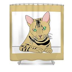 Fluffy Shower Curtain