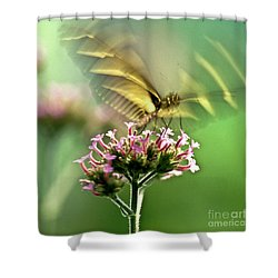 Fluttering Butterfly Shower Curtain by Heiko Koehrer-Wagner