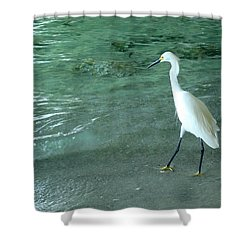 Egret Under Bridge Shower Curtain