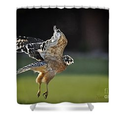 Shower Curtain featuring the photograph Fly Away by Nava Thompson