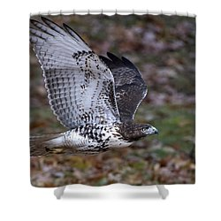 Shower Curtain featuring the photograph Fly By by Stephen Flint