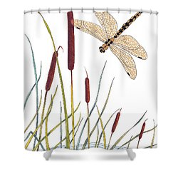 Fly High Dragonfly Shower Curtain by Stanza Widen